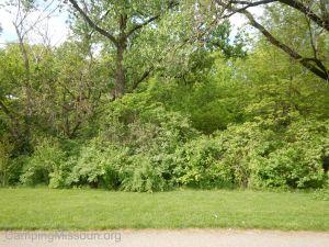 Deer Creek 040