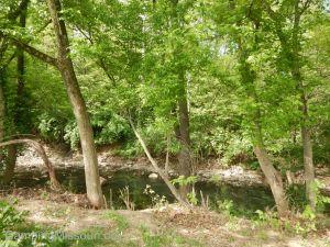 Deer Creek 066