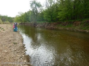 Joachim Creek 4-25-15 035