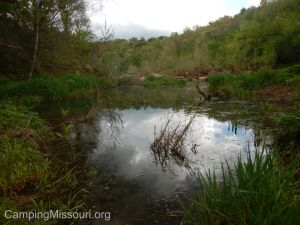 Joachim Creek 4-25-15 057