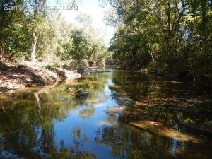 Buck Creek 141